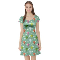 Green Retro Travel Pattern Of Balloons Short Sleeve Skater Dress by CoolDesigns