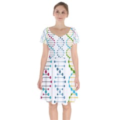 Genetic Dna Blood Flow Cells Short Sleeve Bardot Dress by Mariart