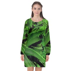 Vivid Tropical Design Long Sleeve Chiffon Shift Dress  by dflcprints