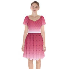 Watermelon Short Sleeve Bardot Dress by jumpercat