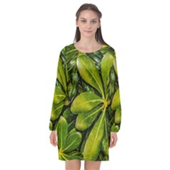 Top View Leaves Long Sleeve Chiffon Shift Dress  by dflcprints