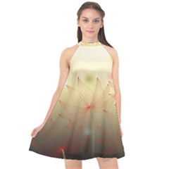 Flower Summer S Nature Plant Halter Neckline Chiffon Dress  by Nexatart