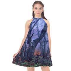 Beeches Autumn Foliage Forest Tree Halter Neckline Chiffon Dress  by Wegoenart