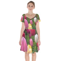 Home Chicago Tulips Short Sleeve Bardot Dress by bloomingvinedesign