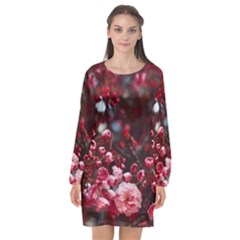 Red Floral Long Sleeve Chiffon Shift Dress
