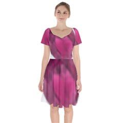 Fun Fuschia Short Sleeve Bardot Dress