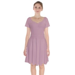 True Mauve Color Short Sleeve Bardot Dress