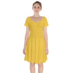 True Saffron Yellow Color Short Sleeve Bardot Dress